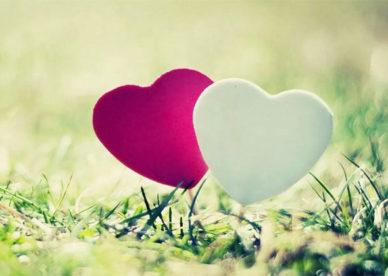 أجمل صور قلوب الحب منوعة وملونة ابيض واحمر -عالم الصور