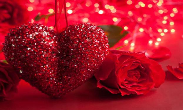 صور قلوب وزهور رومانسية تعبر عن الحب عالم الصور