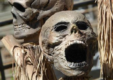 أحلى صور جماجم مخيفة Skulls Horror Images-عالم الصور