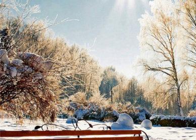 صور خلفية موبايل ايفون 7 HD-عالم الصور