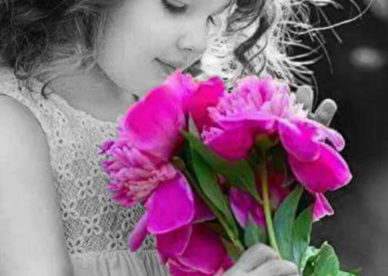 صور زهور ورد طبيعي عن الحب-عالم الصور