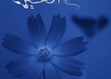 تحميل اجمل الصور مساء الخير فيس بوك-عالم الصور