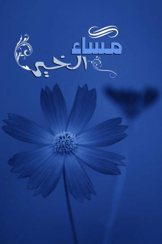 أسعد الله صباحكم ...و .. مساؤكم خيرات . - صفحة 35 Blue-flowers-images-good-evening-Facebook-623x935