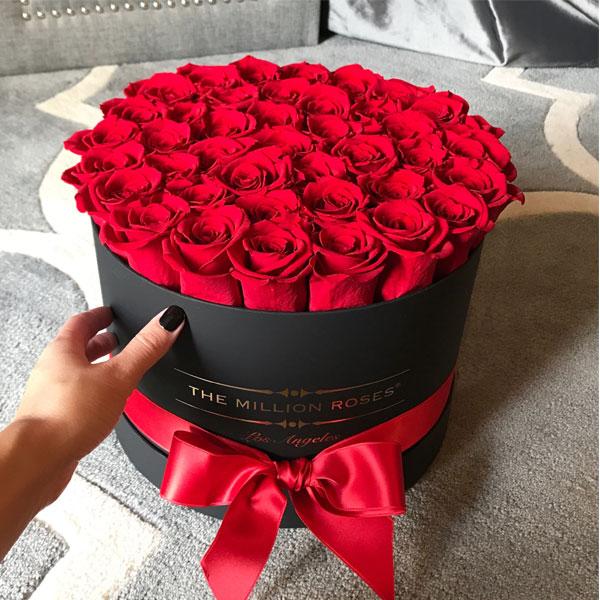 صور ورود جميلة HD 2018 حب وأحلى صور أزهار رومانسية-عالم الصور