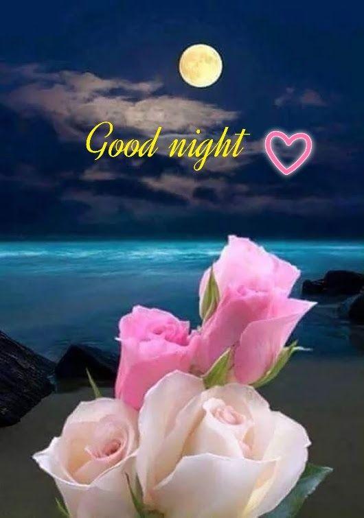 صور مساء الخير بالإنجليزية Good night -عالم الصور