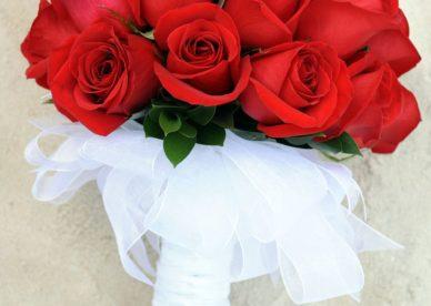صور باقة ورد جوري أحمر رومانسي Damask Rose Bouquet-عالم الصور