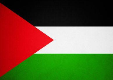 بالصور علم فلسطين-عالم الصور