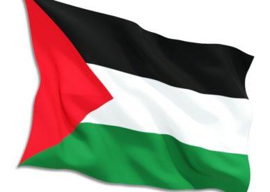 صور عن العلم الفلسطيني 2018-عالم الصور