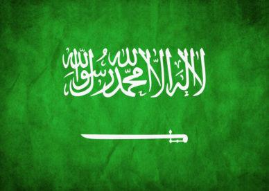 العلم السعودي في صور-عالم الصور