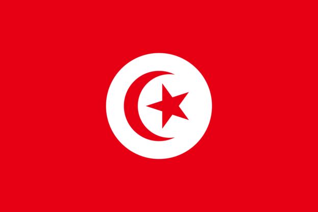 صور العلم العربي التونسي 2018-عالم الصور
