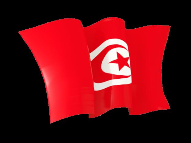 العلم التونسي في صور-عالم الصور