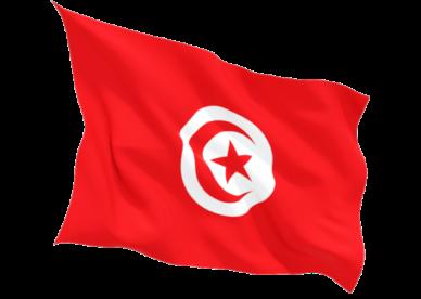 علم تونس 2018 صور العلم التونسي-عالم الصور