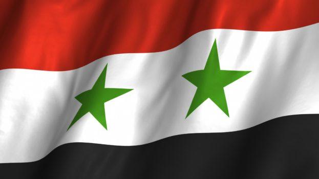 العلم السوري في صور-عالم الصور