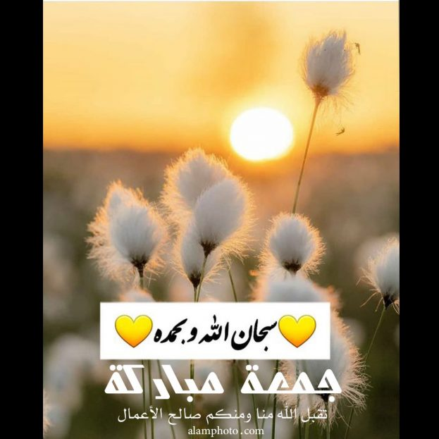 صور جمعة مباركة سبحان الله وبحمده - عالم الصور